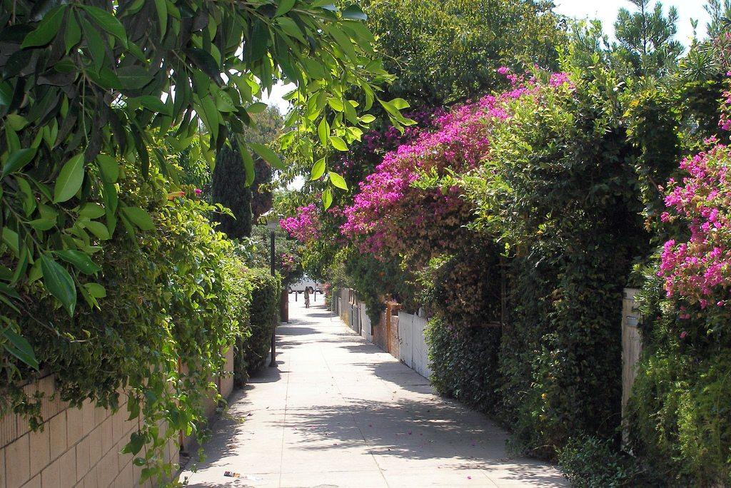 walking street