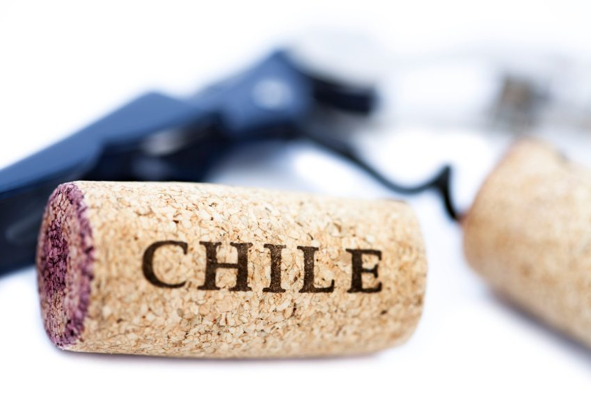 chilean wine Chilean wine - bowery and vine wine & spirits search our inventory to find the  best chilean wine at the best prices.