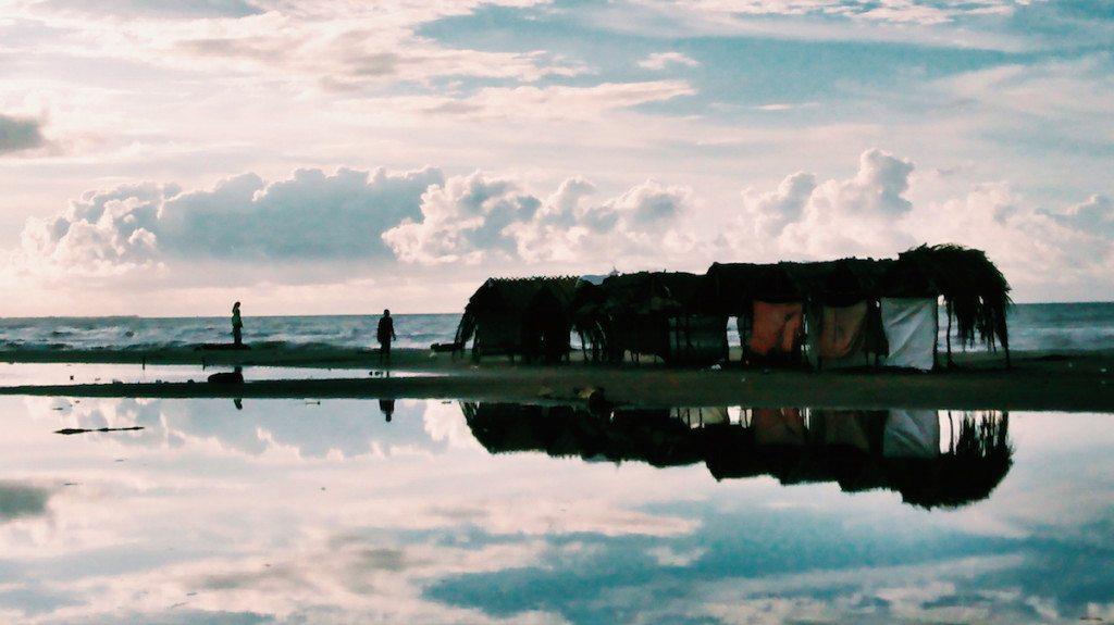 Puerto Colombia x Hayo