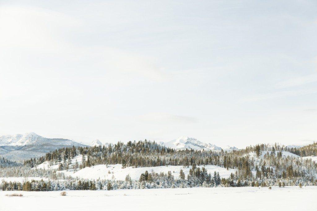 GRybus-Hayo-Idaho-0861