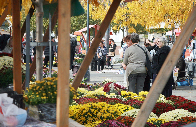 zagreb-flower-market