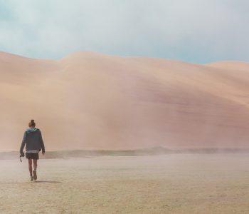 Namibian Desert's Vibrant Landscape