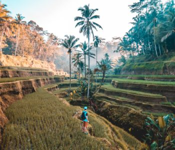 Your Best Guide for Travelling to Bali